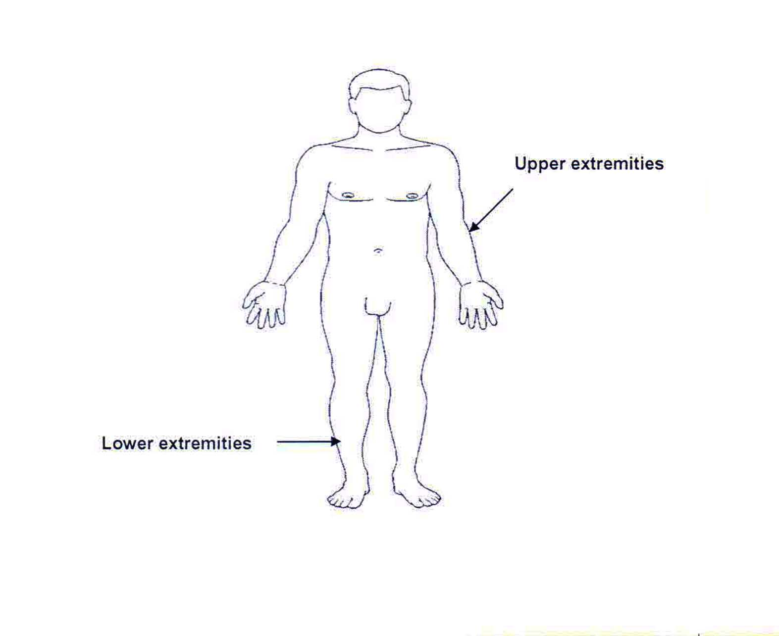 Upper Extremities and Lower Extremities